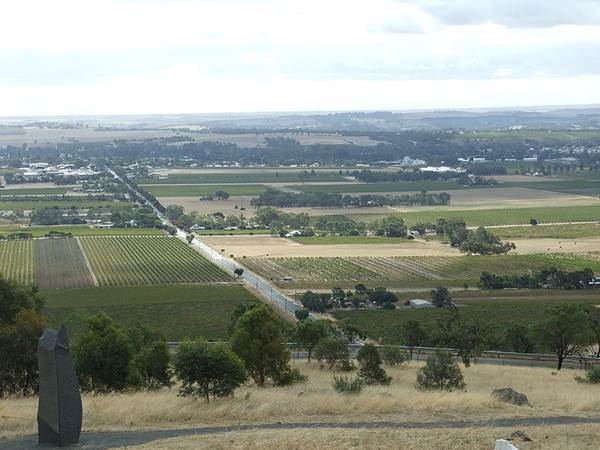 Barossa Valley Wine Region