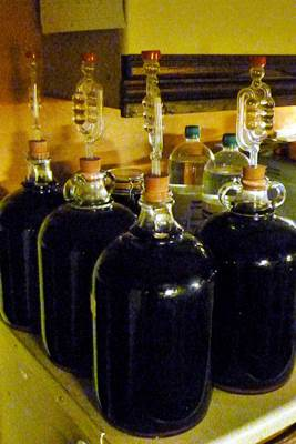 Wine Jars Stored for Fermentation
